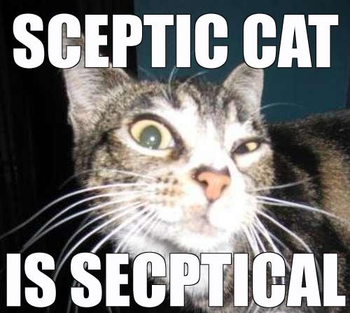 Skeptical-cat-is-skeptical